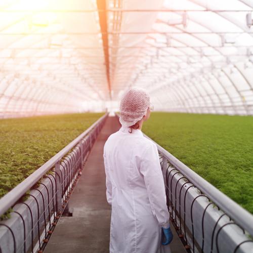 Πιστοποίηση UCERT | ISO 22000 Διαχείριση Ασφάλειας Τροφίμων